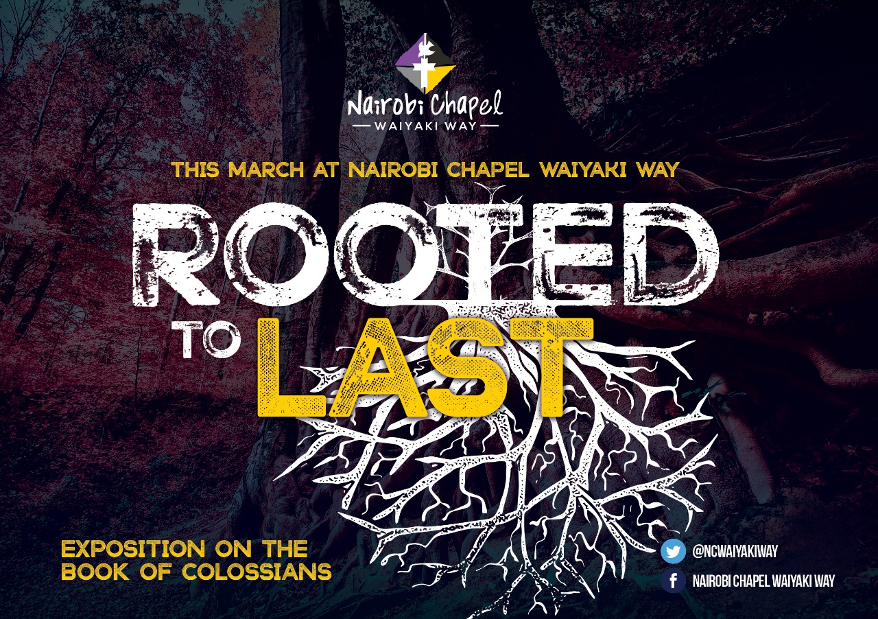 Rooted to Last :  Colossians Chapter One